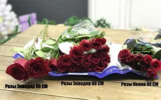 Что же сделало эквадорские розы такими популярными