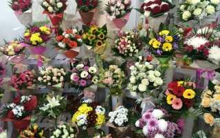 Правильно выбрать цветы