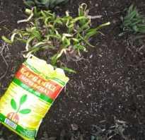 Весеннее удобрение для сада и огорода