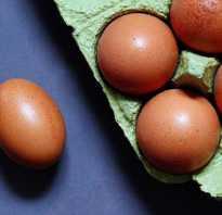 Вредны ли яйца