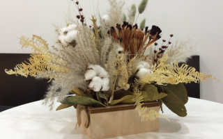 Сухоцветы и возможность их хранения дома