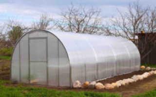 Подготовка почвы и грядки для огурцов в теплице