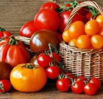 Элитные сорта томатов для теплиц