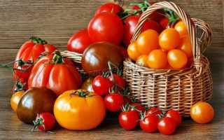 Лучшие сорта помидор для теплицы фото