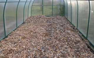 Подготовка земли в теплице осенью