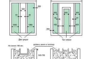 Особенности выращивания в теплицах из поликарбоната