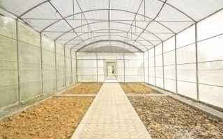 Подготовка почвы в теплице осенью