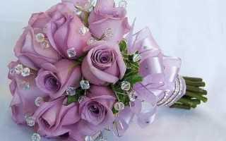 Правда ли что розы бывают фиолетовыми